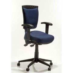 Back Care Elite Pro Chair