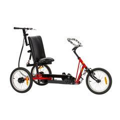 Trivel T250 Adaptive Trike